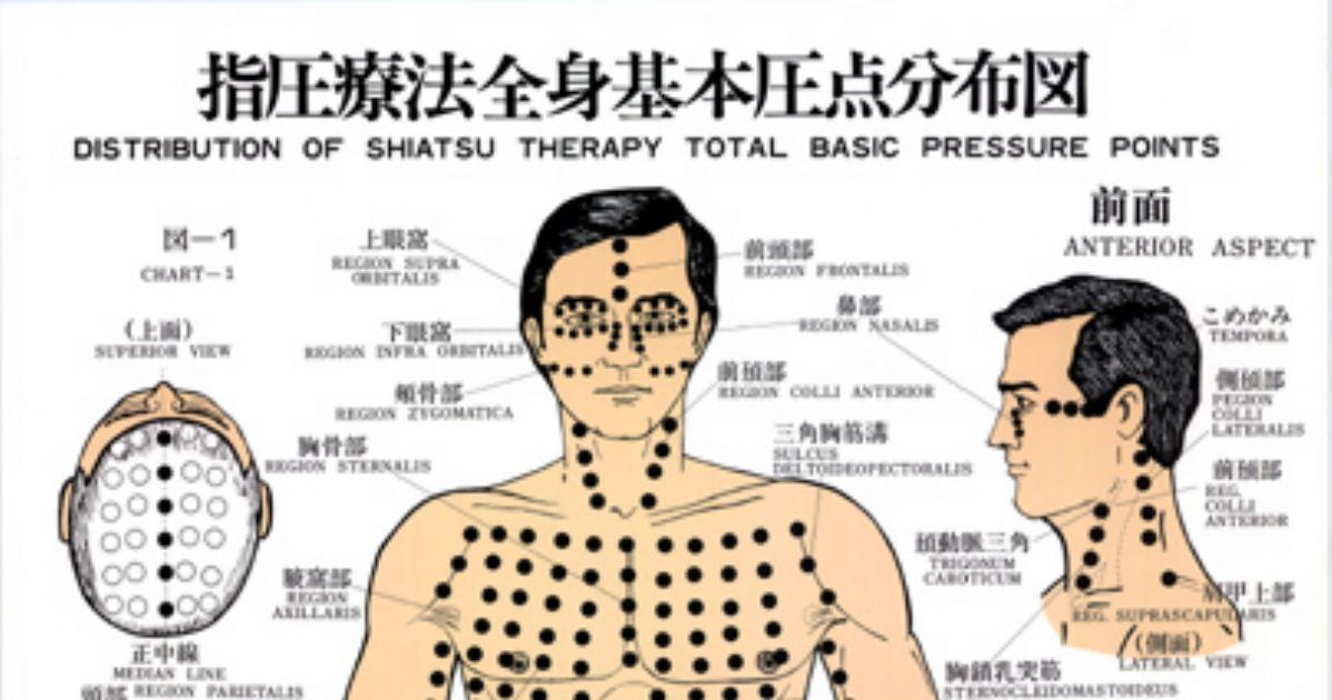 Shiatsu DVD - la medicina del bienestar (AVI)